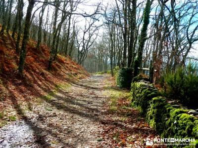 Sierra de Gata, Trevejo,Hoyos,Coria; monasterio de piedra viajes lagunas de ruidera la pinilla